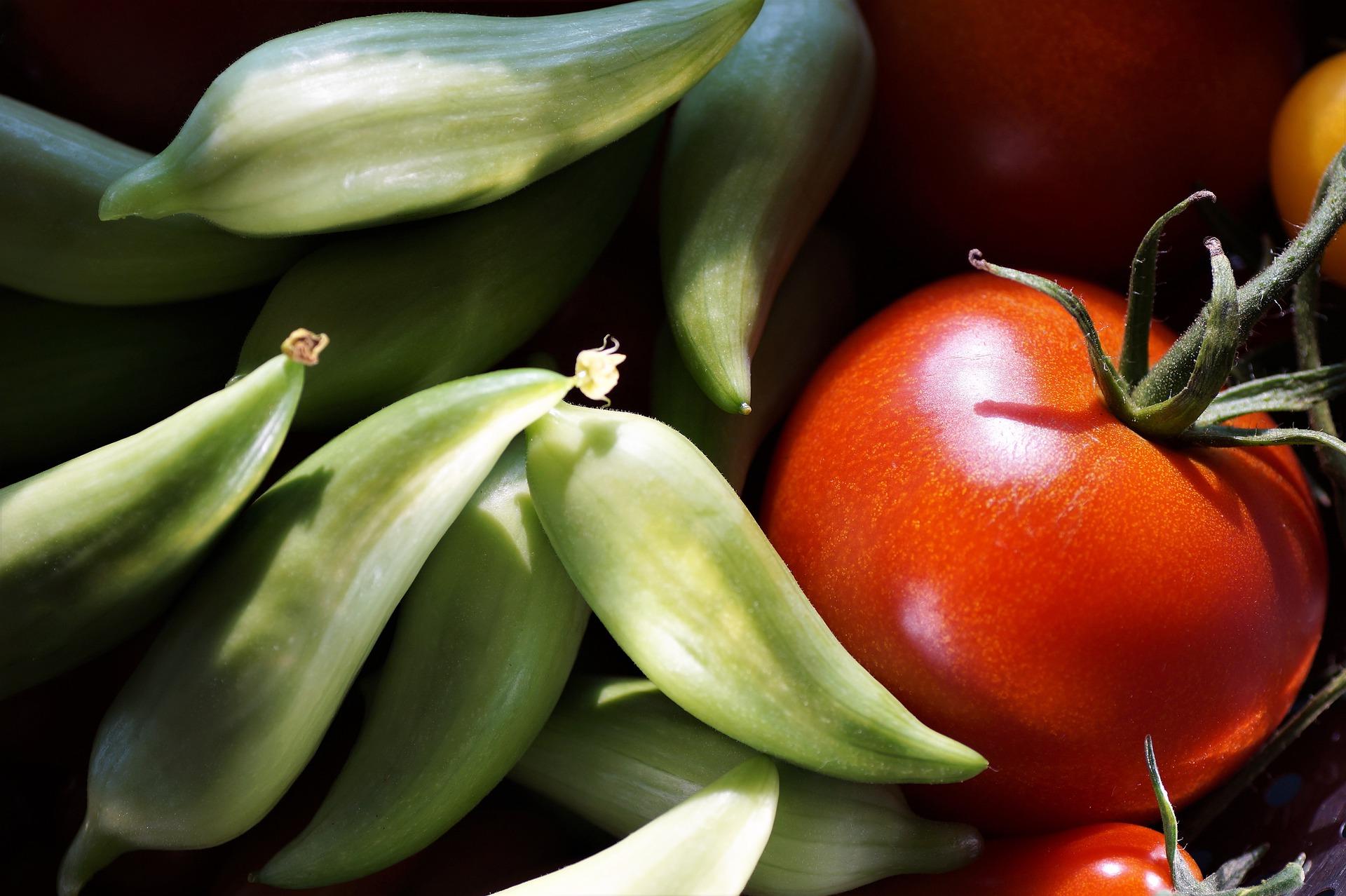 Caigua zelené plody