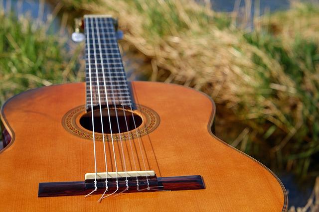 kytara v trávě