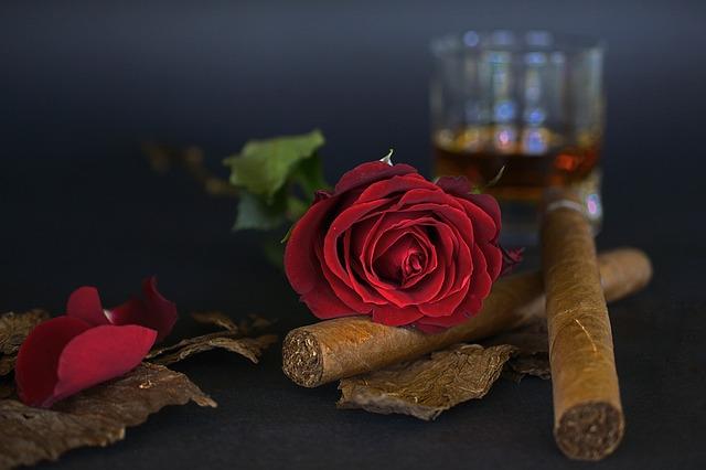 doutník a růže